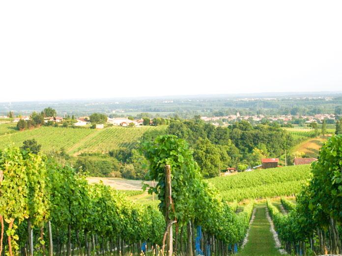 Domaine viticole ete Magnum cuvee prestige l original superieur bordeaux rouge chateau larquey caudrot